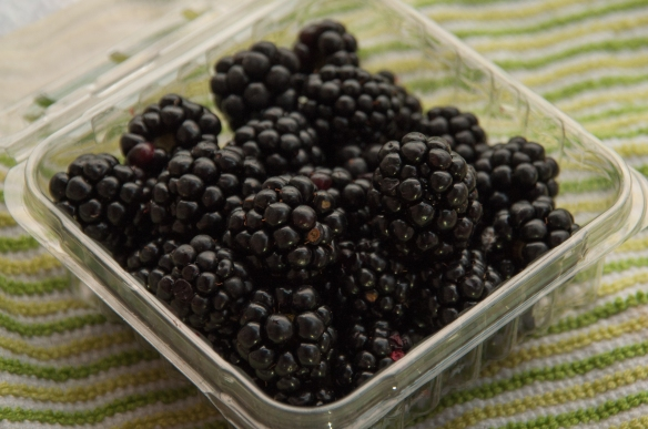 blackberries, local, virginia