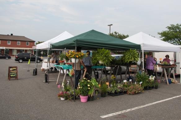 Leesburg, farmer's market, plants
